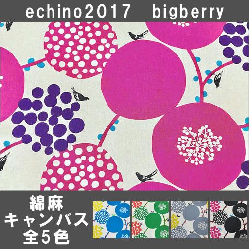 画像1: ★2017新柄フェア★【綿麻キャンバス】 ビッグベリーstandard echino 2017 bigberry