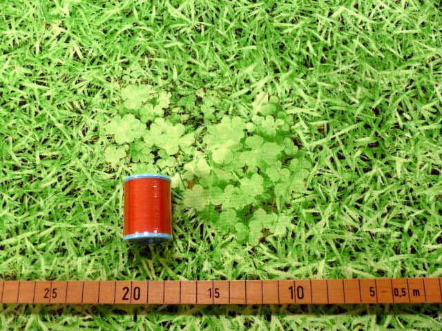 画像1: 【30cmパネル単位続けてカット】ぷらんぷちぃくす★芝生でゴロン★綿100%キャンバス  ぷらんぷちいくす