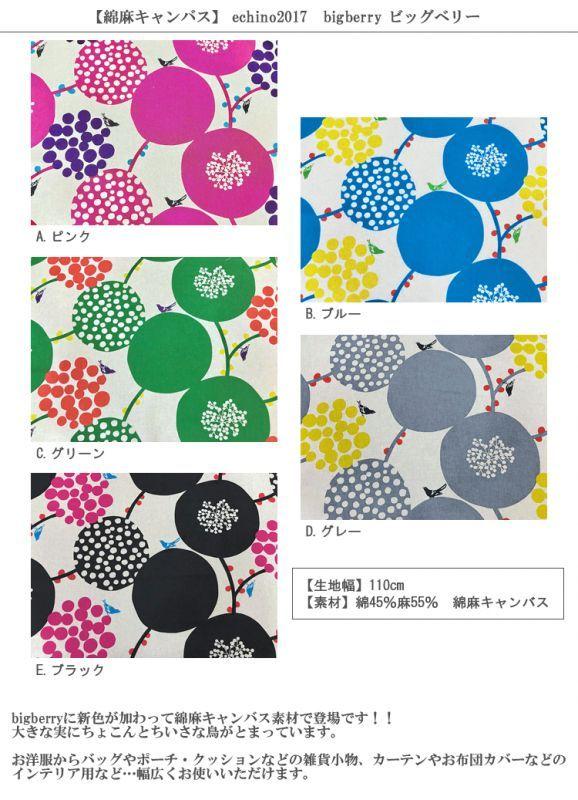 画像2: 【綿麻キャンバス】 ビッグベリーstandard echino 2017 bigberry