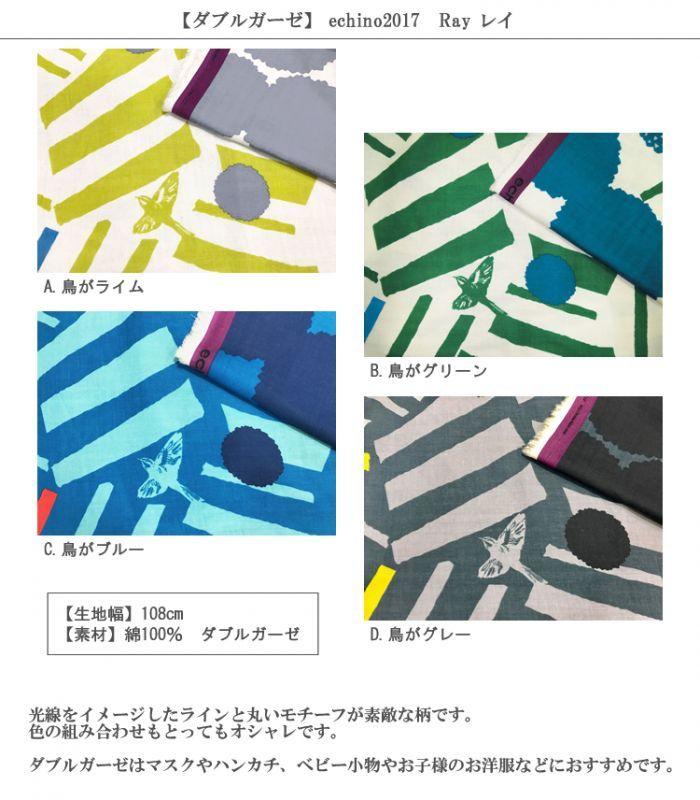画像2: 【ダブルガーゼ】レイ  echino2017 Ray