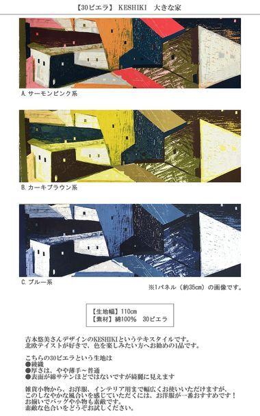 画像2: 【30ビエラ】◆2パネル(約70cm)ハギレ KESHIKI 大きな家