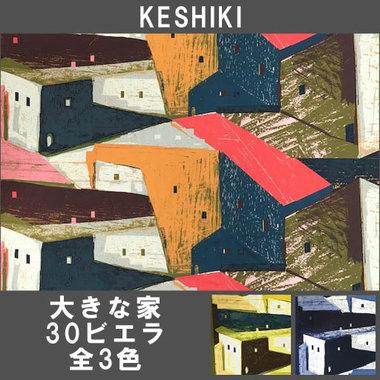 画像1: 【30ビエラ】◆2パネル(約70cm)ハギレ KESHIKI 大きな家