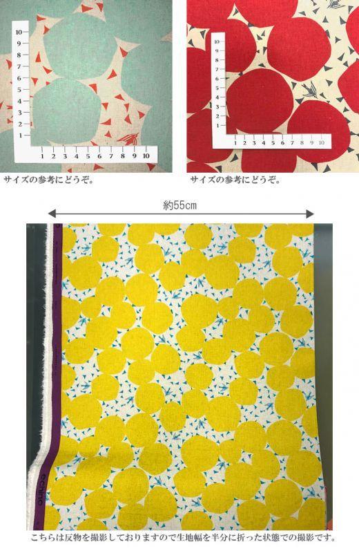画像3: 【綿麻キャンバス】◎約50cm×約50cm 5色セット バブル echino2018 bubble