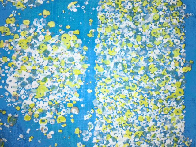 画像1: 【ダブルガーゼ】060802■約50cmハギレ フワリフワリ  青地/水辺詩 naniIROサイドボーダー柄